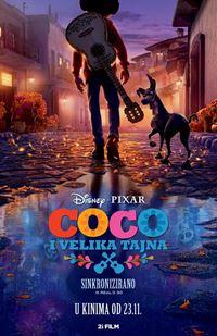 Coco i velika tajna - sink